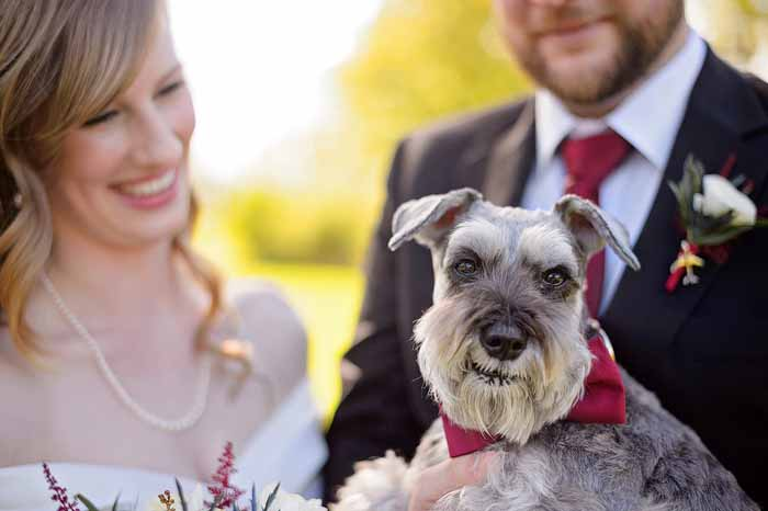 Bride and Groom with their dog on their wedding day at Britannia Beach Park