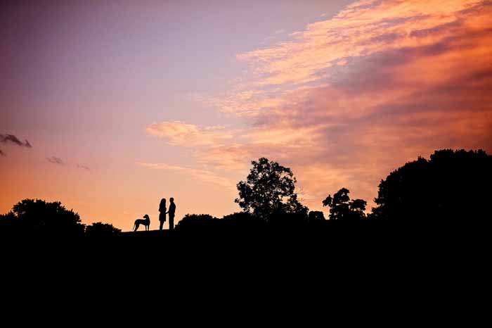Engagement session sunset image with their great dane dog at the Arboretum